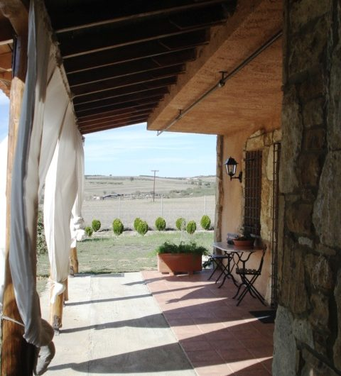 Fabulous Villa with Olive Grove