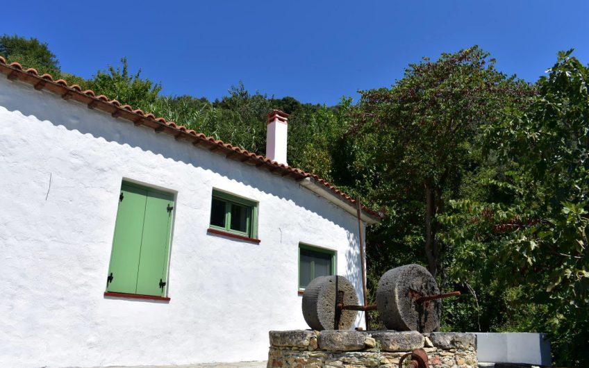 Skopelos Traditional Villa and Studio Complex